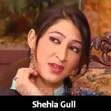Dhari Aayan Dhari - Mp3 + VIDEO Karaoke - Shehla Gul - Saraiki